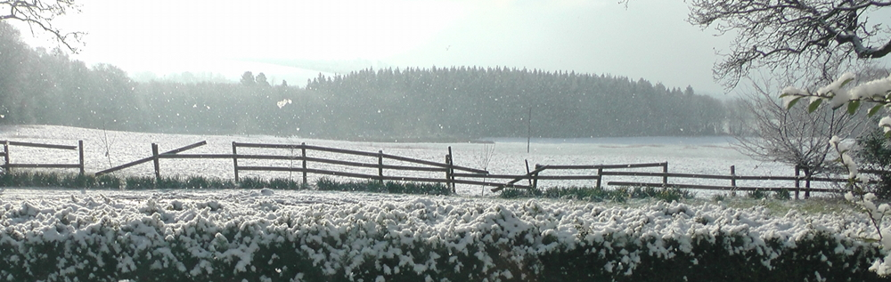 snow20130327