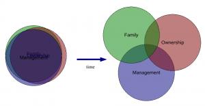 familyownershipmanagement